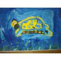 Charlotte's turtle