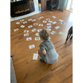 Logan's word and picture sorting