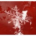 Snowflake on a car light