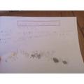 Alfie's super information booklet