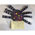 Abigail's spider