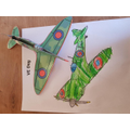 Be's VE Day areoplane