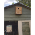 Georgia made a bird box