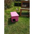 Georgia made a hedgehog house