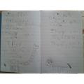 Alice's information booklet