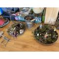Madison and Garrett's micro gardens.