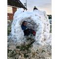 Harvey's igloo