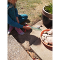 Measuring the distance travelled by Snail