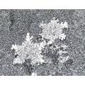 Snowflakes on a car