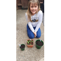Olivia has been very busy growing herbs!