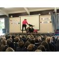 Dog Safety Assembly