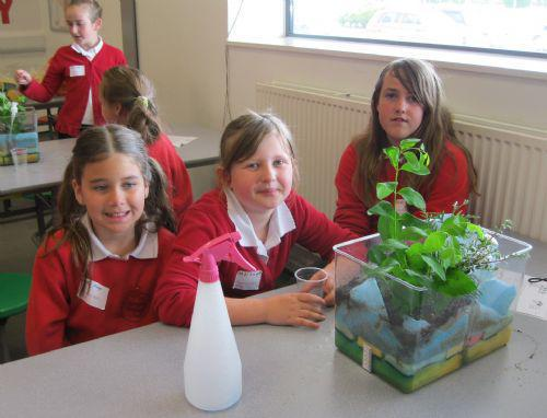 Modelling the water cycle