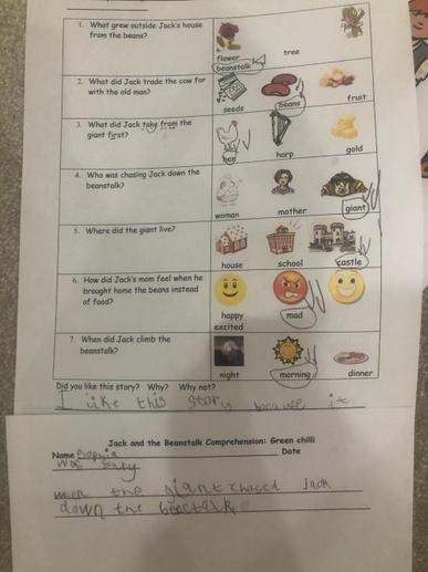 Sophia's comprehension test