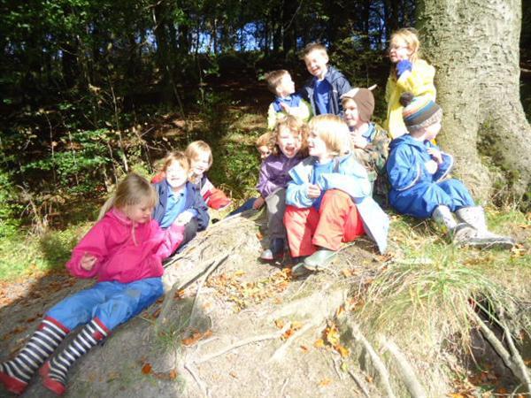 A woodland gathering
