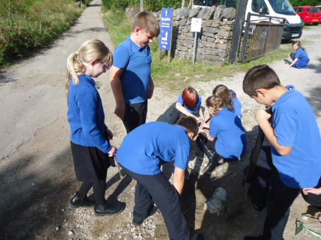Working together to dig for rocks.