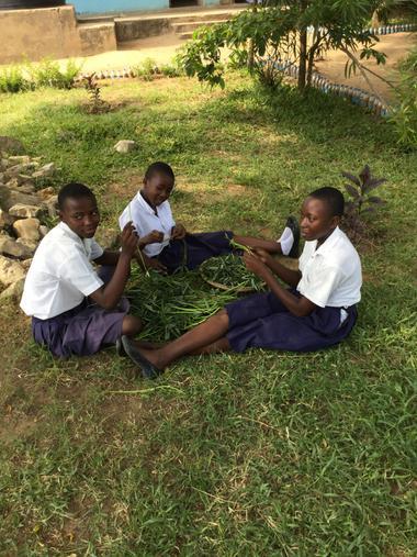 Preparing Tembele