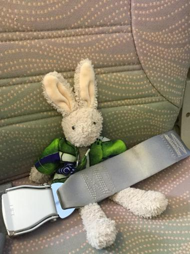 Stanley Rabbit is belted up ready to go !