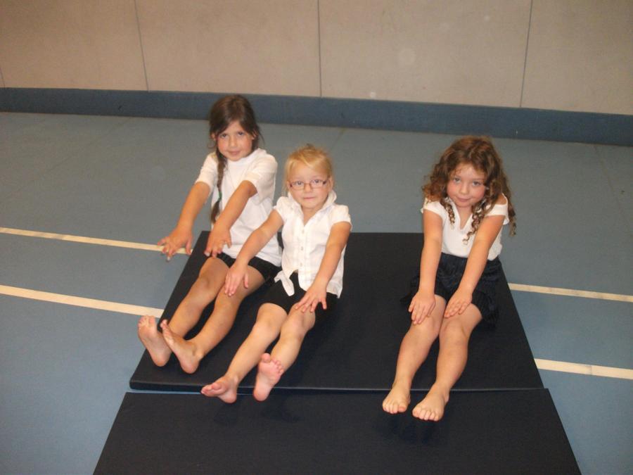 Gymnastics Festival