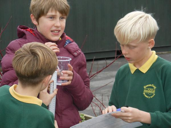 Year 6 science experiment