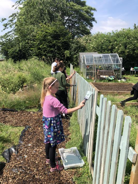 The allotment fences were painted.