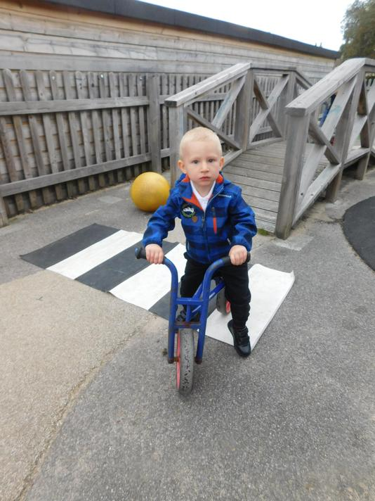 Balance bikes can be tricky when exploring the outdoor area for the first time.