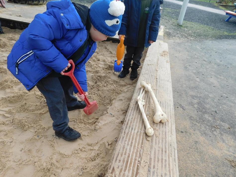 Alex uncovered some dinosaur bones!