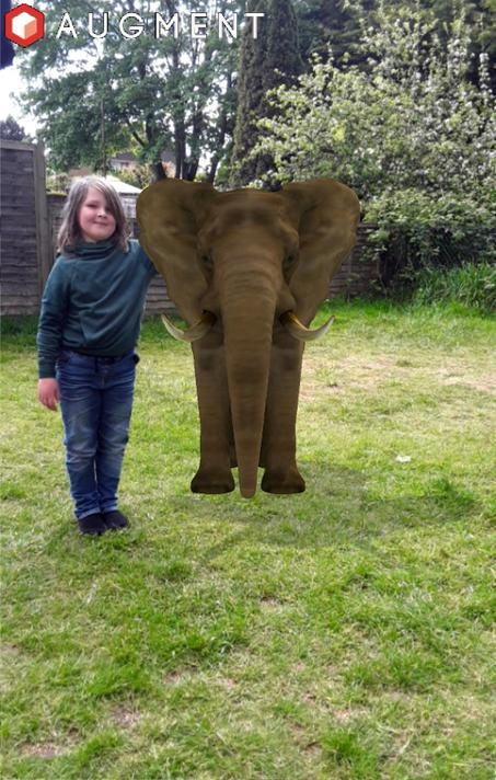 Dylan encountered an elephant in his garden!
