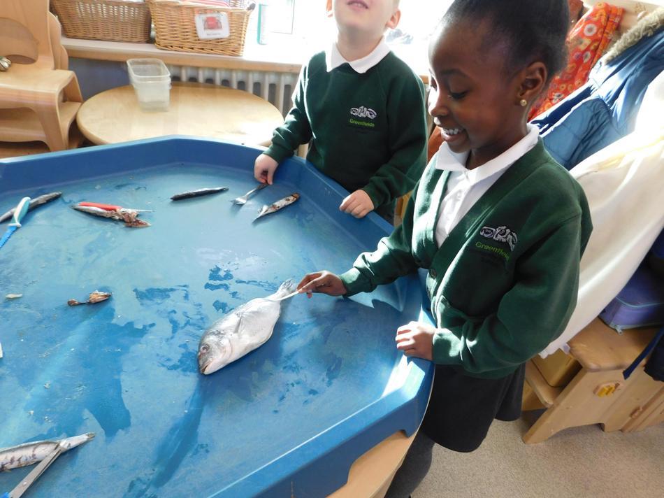 We explored dead fish and tasted sea food.