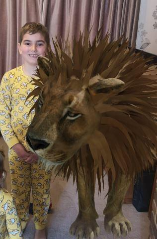 Jaden was visited by a lion in his louge!