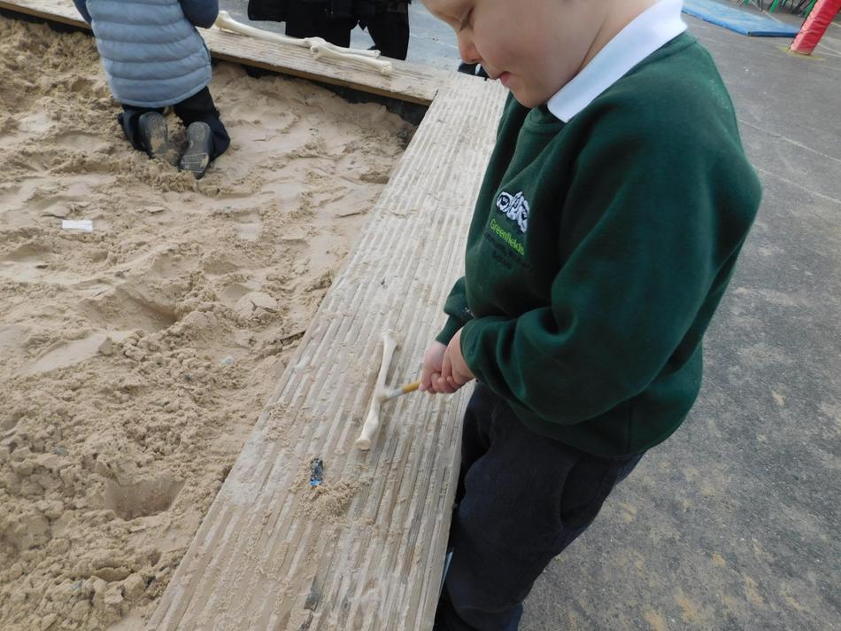 Archie carefully excavating a dinosaur bone.