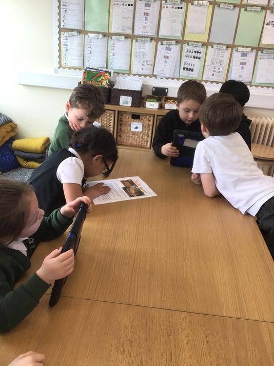 Using iPads to research cheetahs