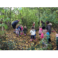 Forest School with Mr Norris
