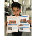 Riyan's Grand Canyon leaflet,