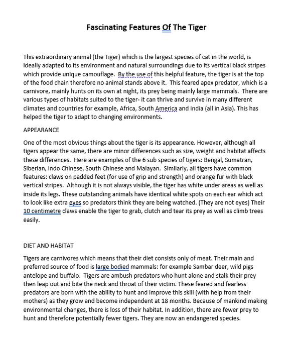 Maariyah's fascinating features of a tiger!