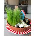 George's grass has grown 16cm since last week!