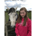 Enjoying the horses!
