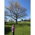 Lucy's Winter tree.