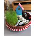 George's grass has grown 8cm in 1 week!