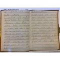 Amazing diary entry!