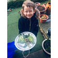 Max explored freezing water by creating an ice picture.