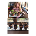 Grace's plants are growing beautifully.