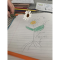 Sophia drew and labelled a flower.