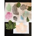 Ollie made colourful leaf rubbings.