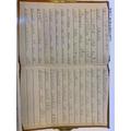 Freya's fantastic diary