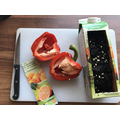 Wk 1 Planting pepper seeds in a juice carton.