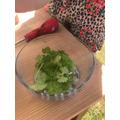 Grace's parsley.