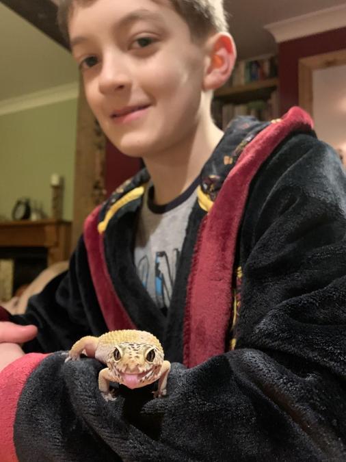 Oscar and his leopard gecko, Cheetah.