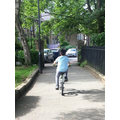 Ollie has been biking every morning.