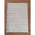 Lilly's ideas for her letter to the NHS nurses