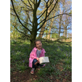 Lucy went on a woodland walk.
